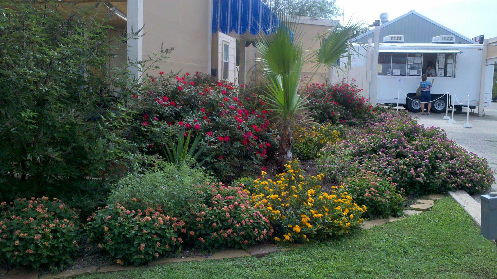 vibrant flower bed.jpg