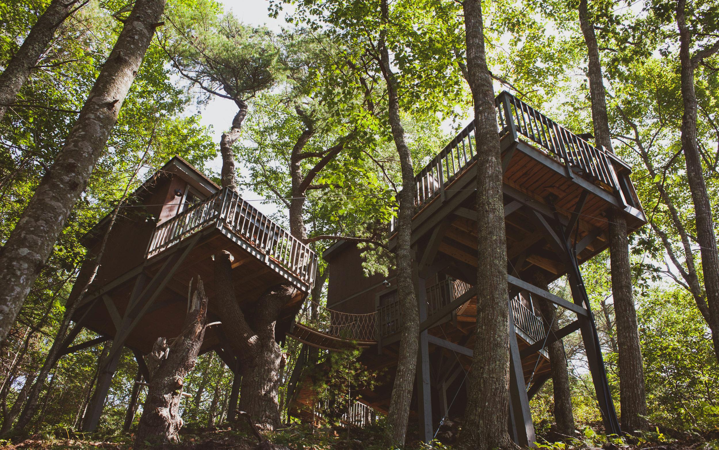 2 Bedroom Treehouse