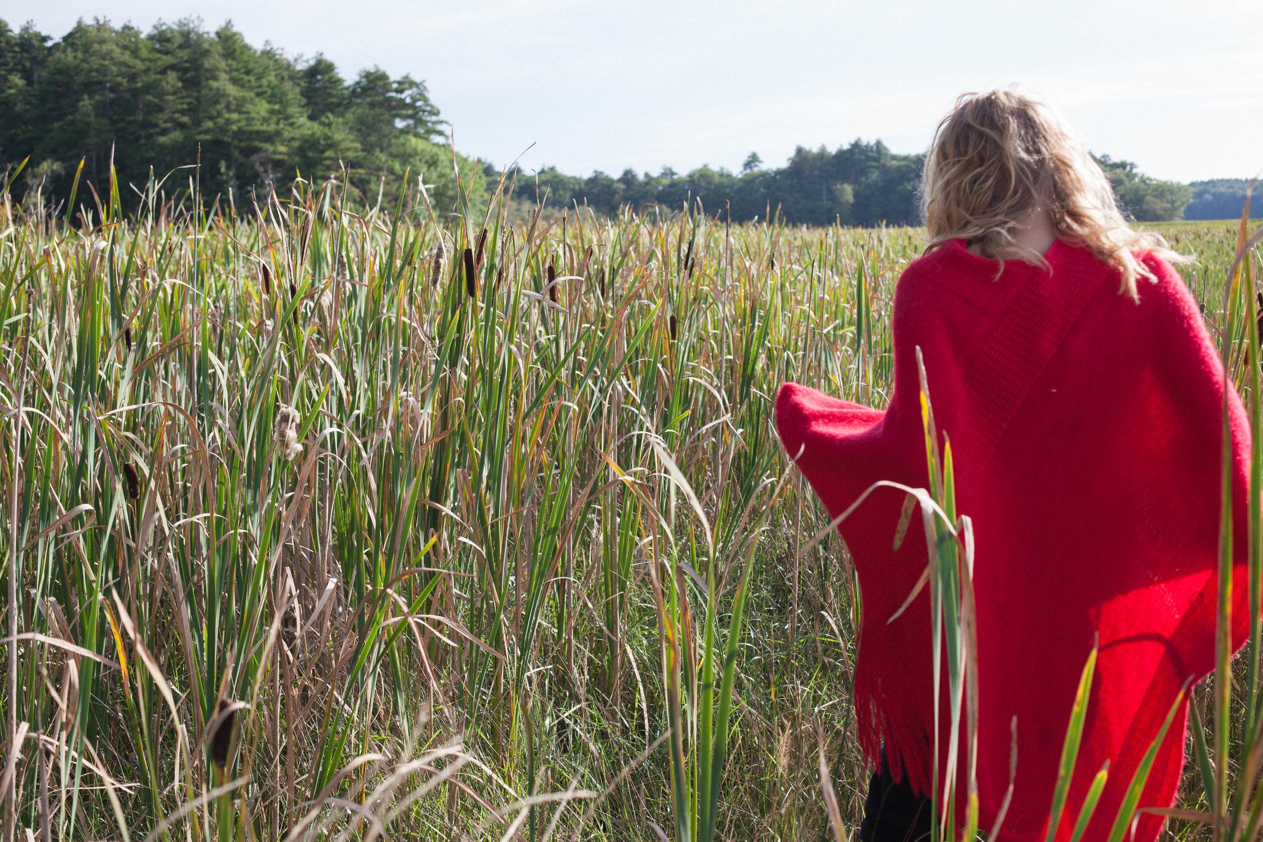 Endless amounts of marshland