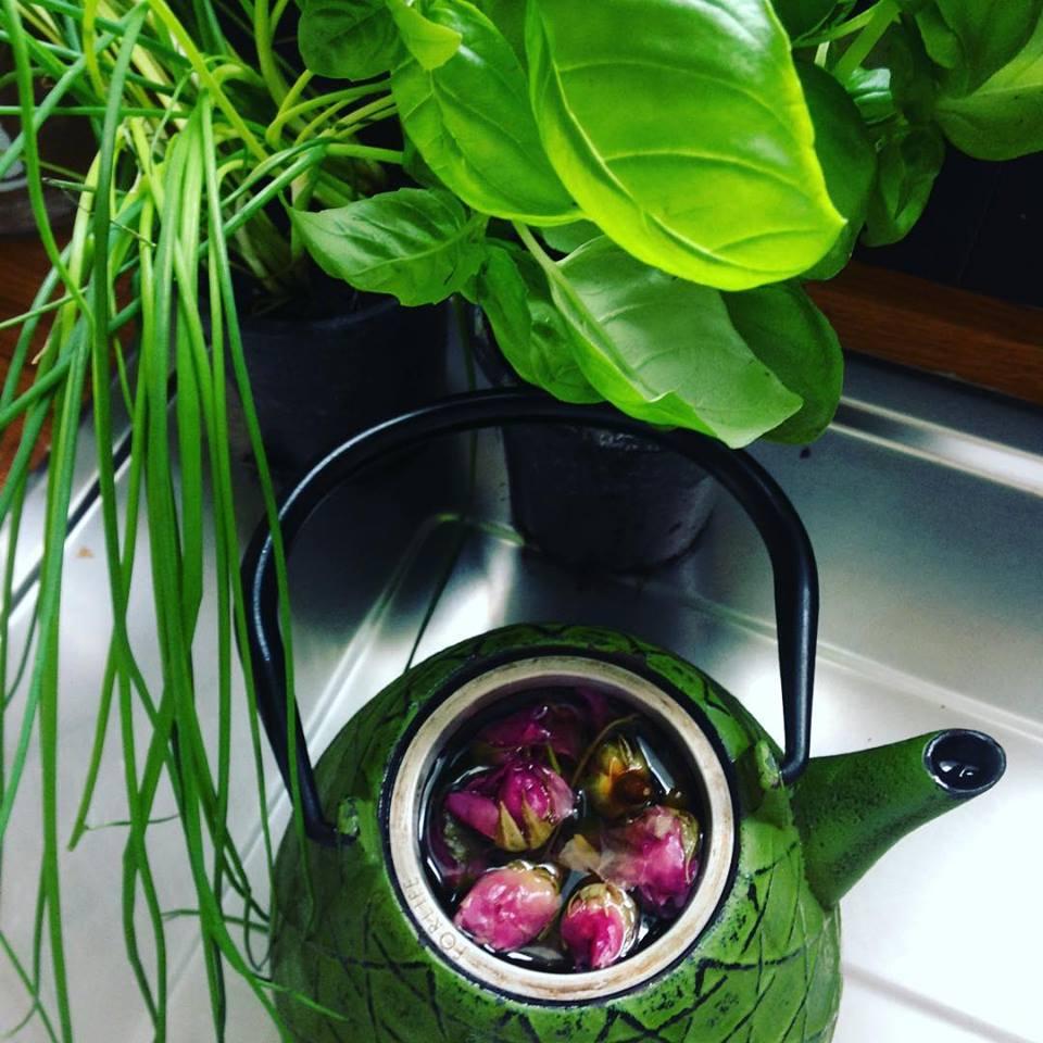 organic bio teas.jpg