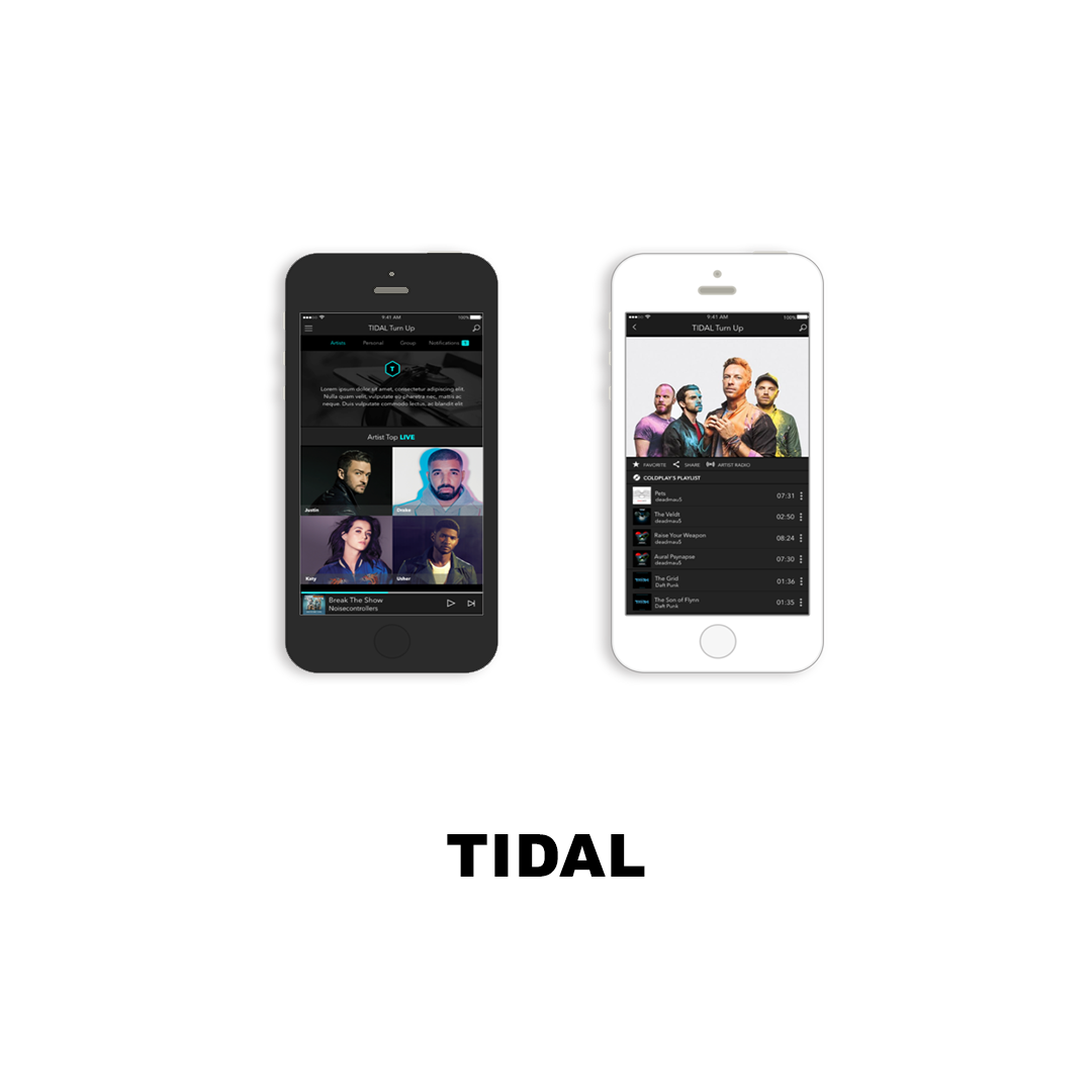 The world's best sounding digital streaming music service.