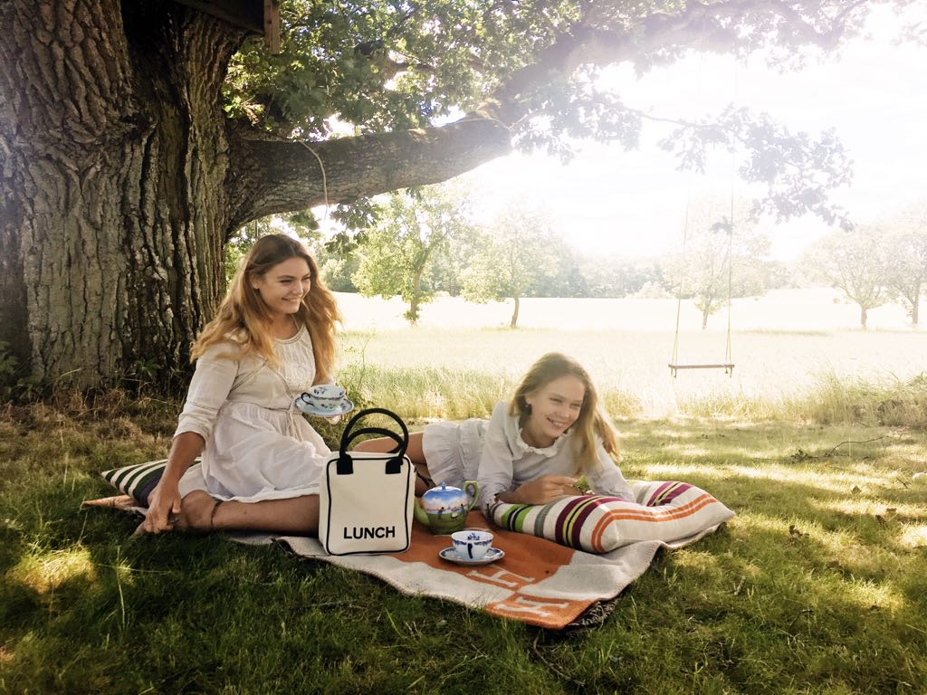 Lunch Box Picnic Under Oak Bag-all.jpg