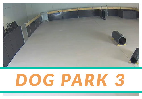 ARH2-thumb-DogPark3.jpg