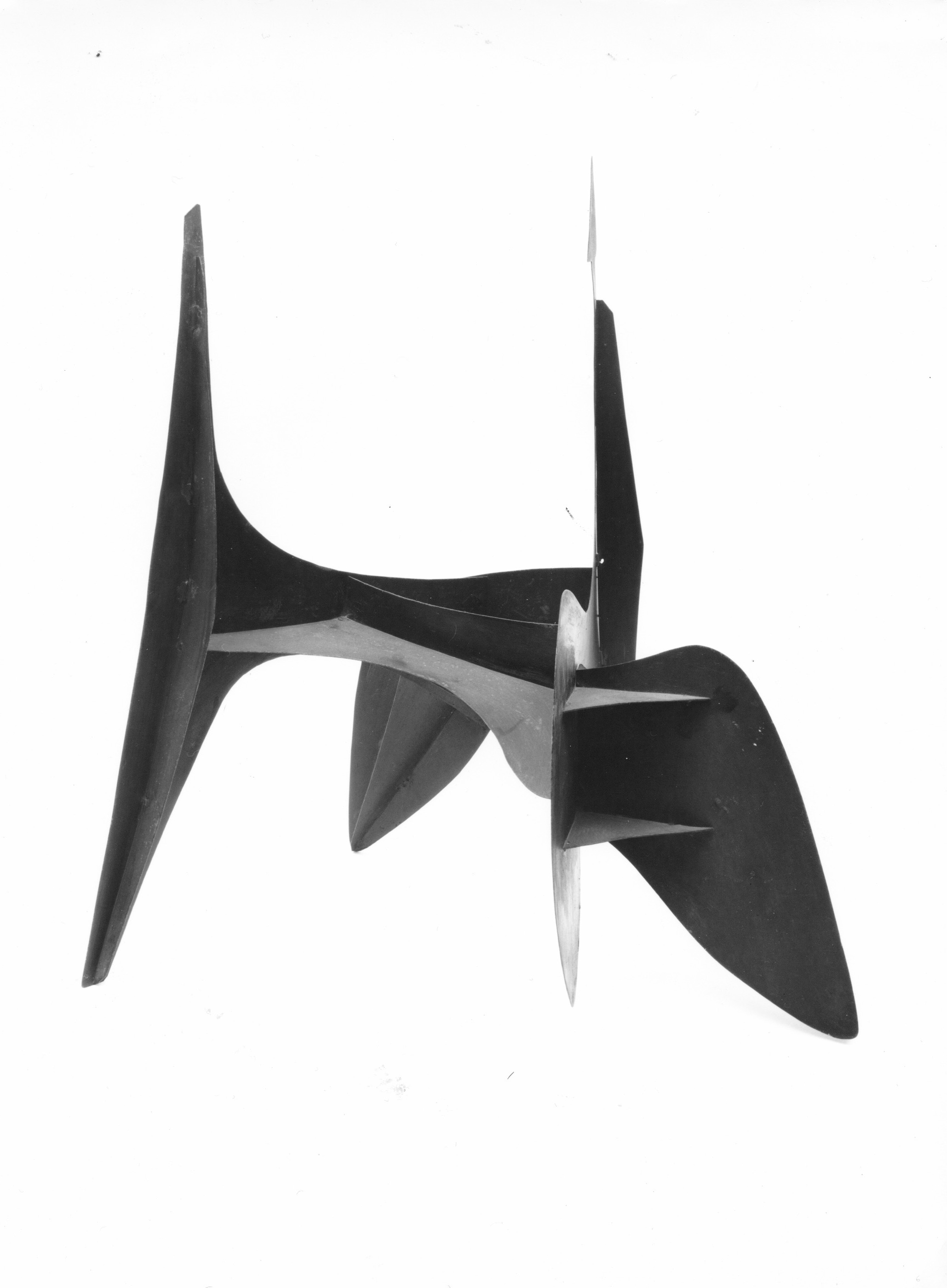 Calder 2.jpeg