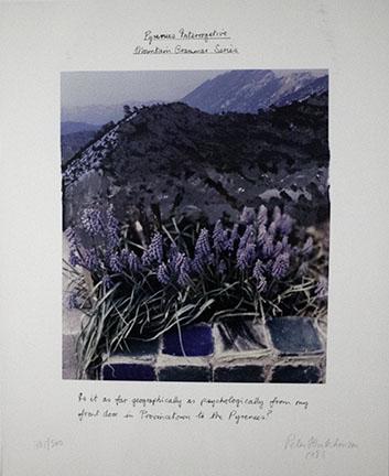 Peter Hutchinson, Pyrenees Interrogative, 1986
