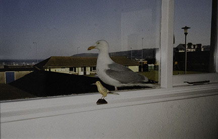 Mona Hatoum, Birds of a Feather, 1997