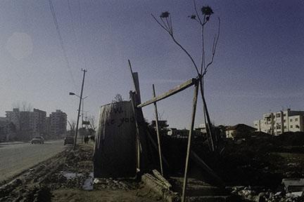 Anri Sala, Untitled, 2003