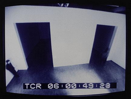 Julia Scher, Vigilance, 1991