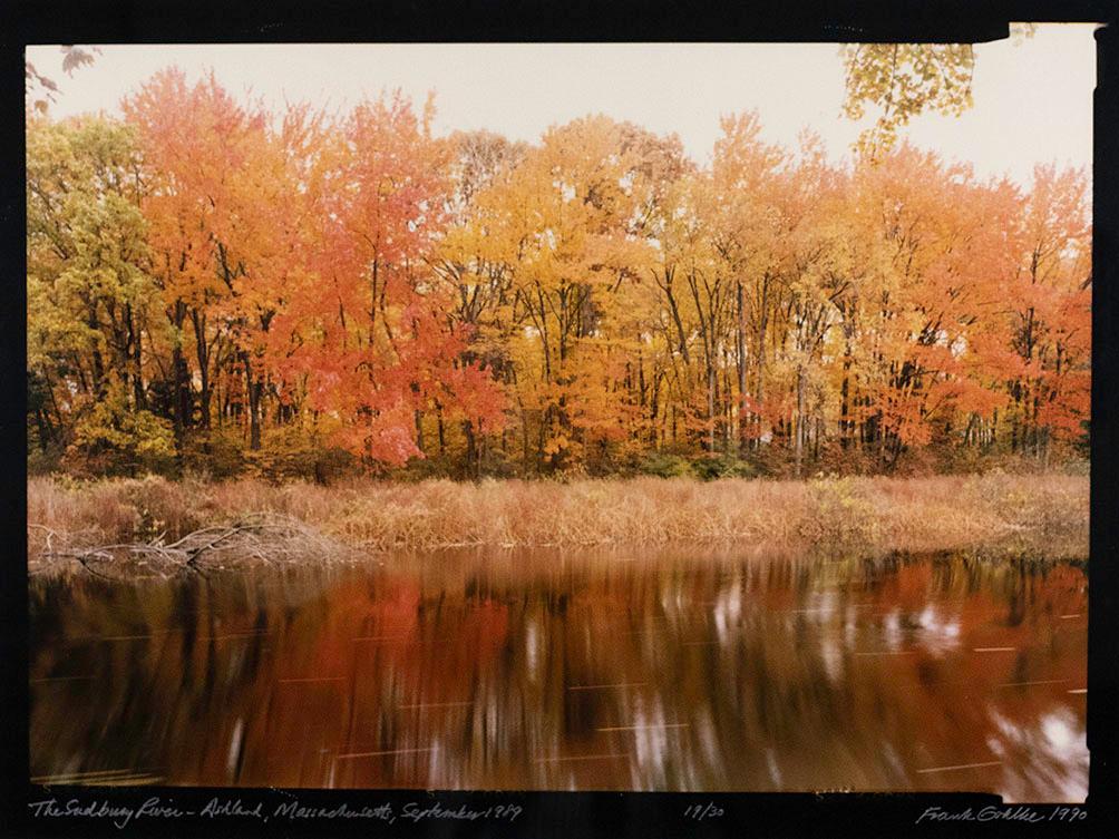 Frank Gohlke, The Sudbury River - Ashland, MA, October 1989, 199