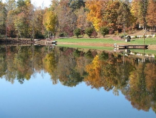 BEST-pond-jpg.jpg