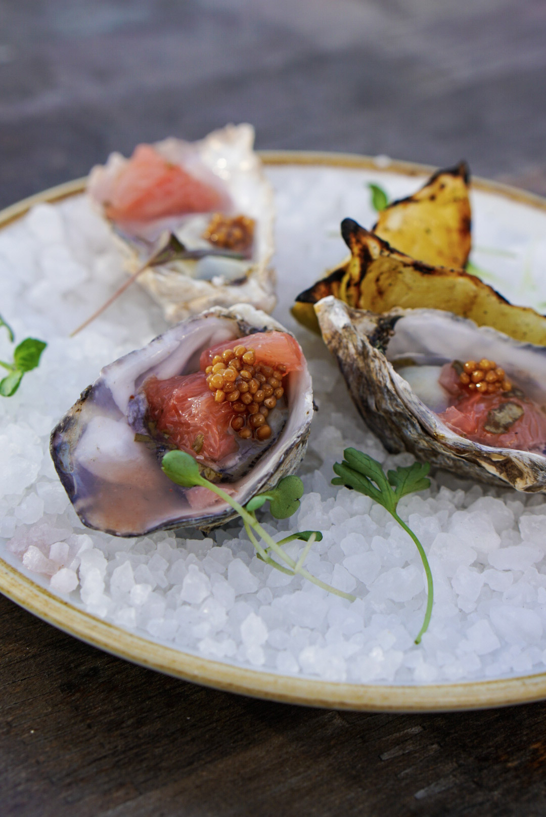 Close up Freshly Shucked Oysters with Grapefruit Mignonette.jpg