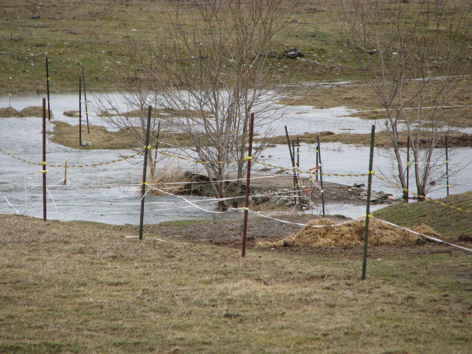 200904 Spring floods