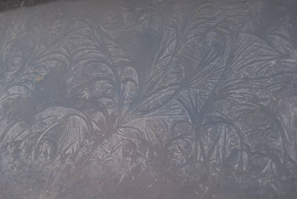 20120203_frost patterns on the poultry room window