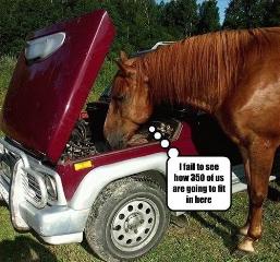 250 horsepower?