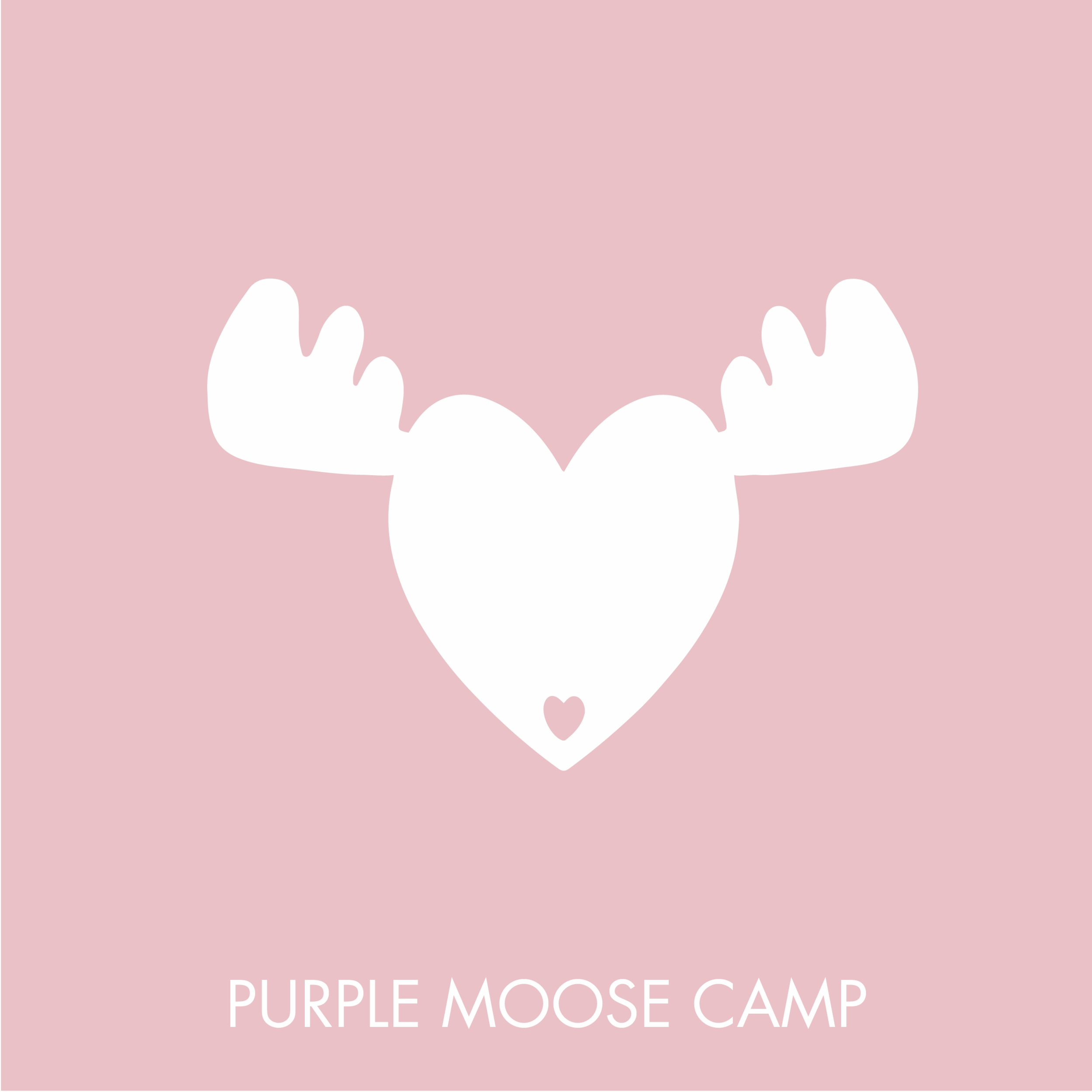 PURPLE MOOSE CAMP