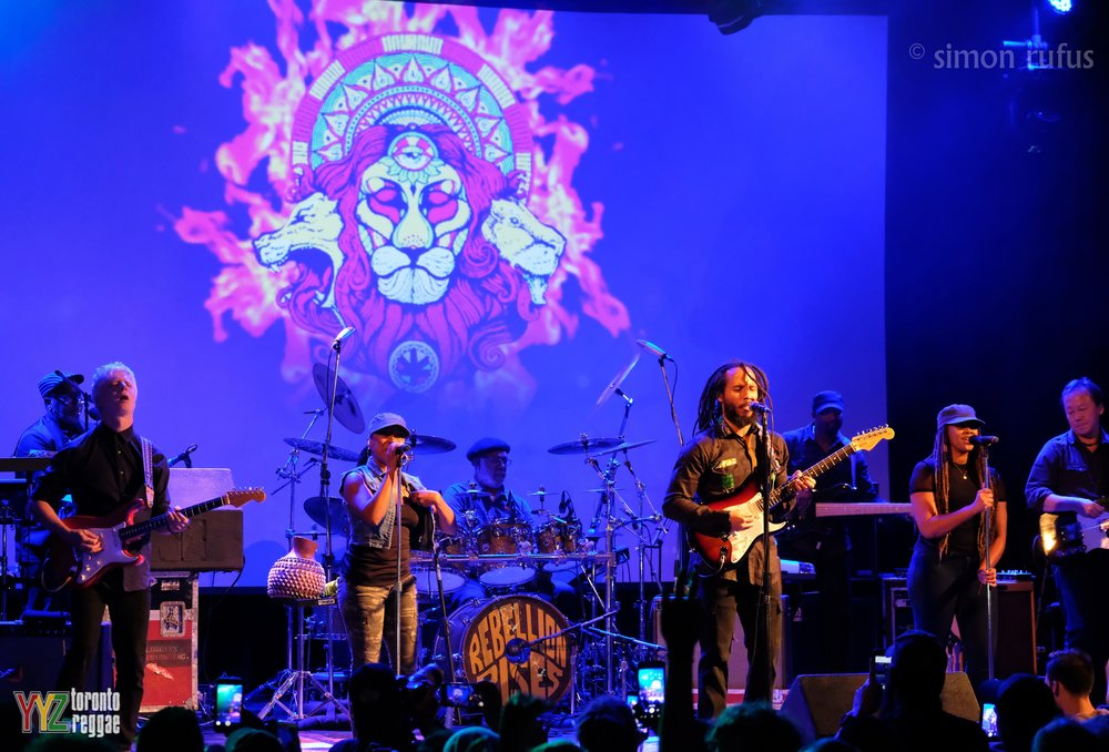 whole+band+lion+2.jpg