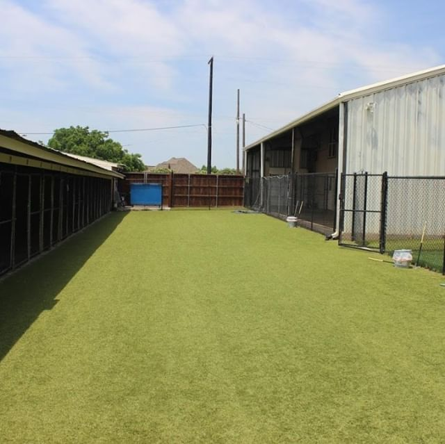 Imagine letting your dogs loose here! #K9Grass #dogturf #wholetthedogsout