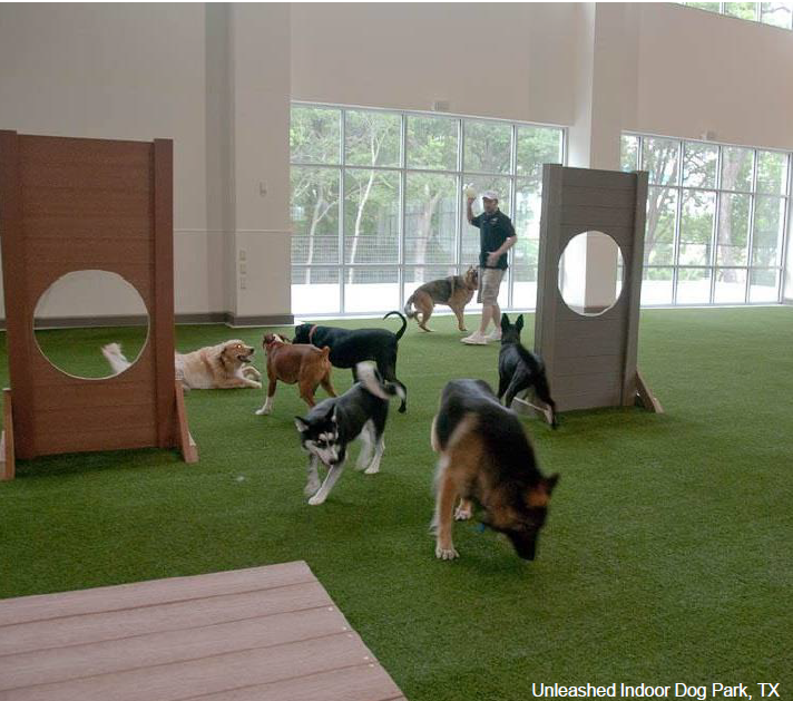 Unleashed Indoor Dog Park Carrolton TX.PNG