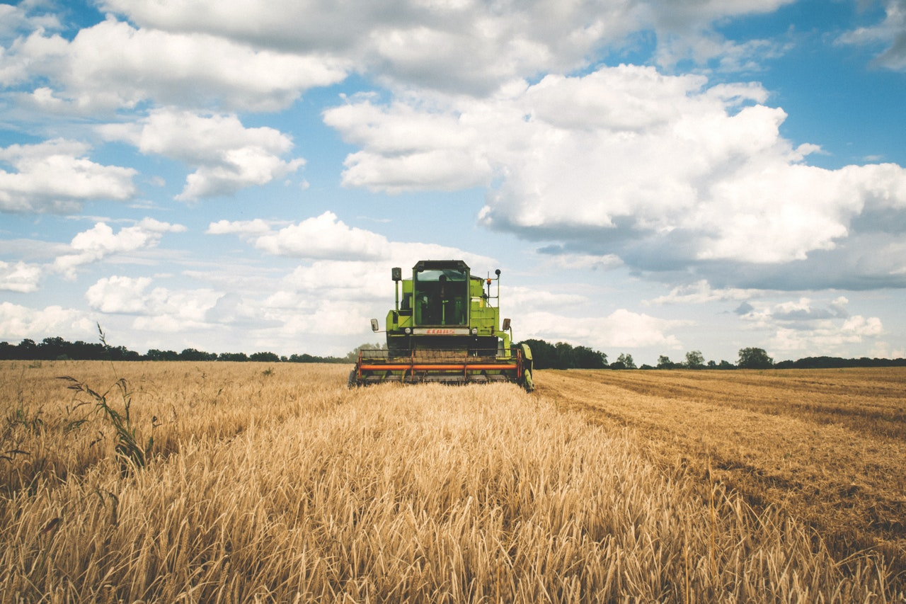 AGRISCIENCE - This curriculum teaches the fundamentals of modern farming, environmental management and animal production.