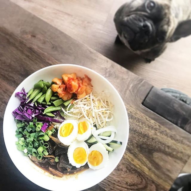 When lunch looks this good, no one can resist (especially Piper) • Check out my stories for the step by step and my bio for the link the original recipe. #koreanbeef #couliflowerrice #colorfulfood #drool #whole30recipes #koreanbeefbowl #paleo #gluetenfree #dairyfree #foodspo #foodpic #foodpicoftheday #madeathome #cooking #whole30 #kimchi #yum