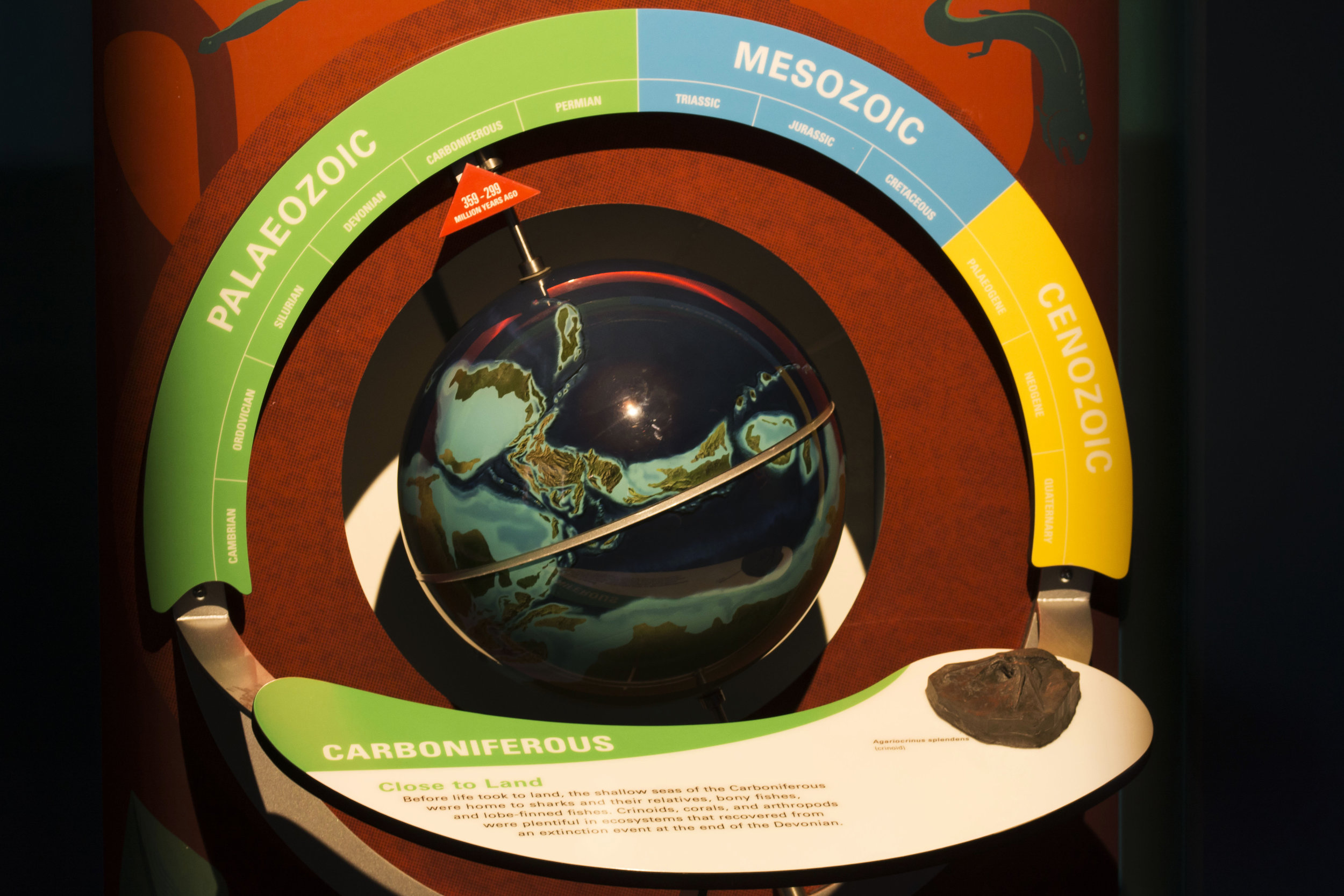 globe-carboniferous.JPG