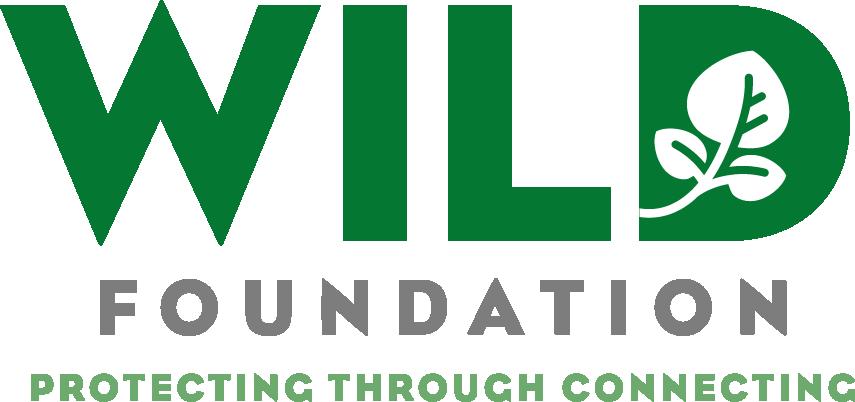wild-logo.png
