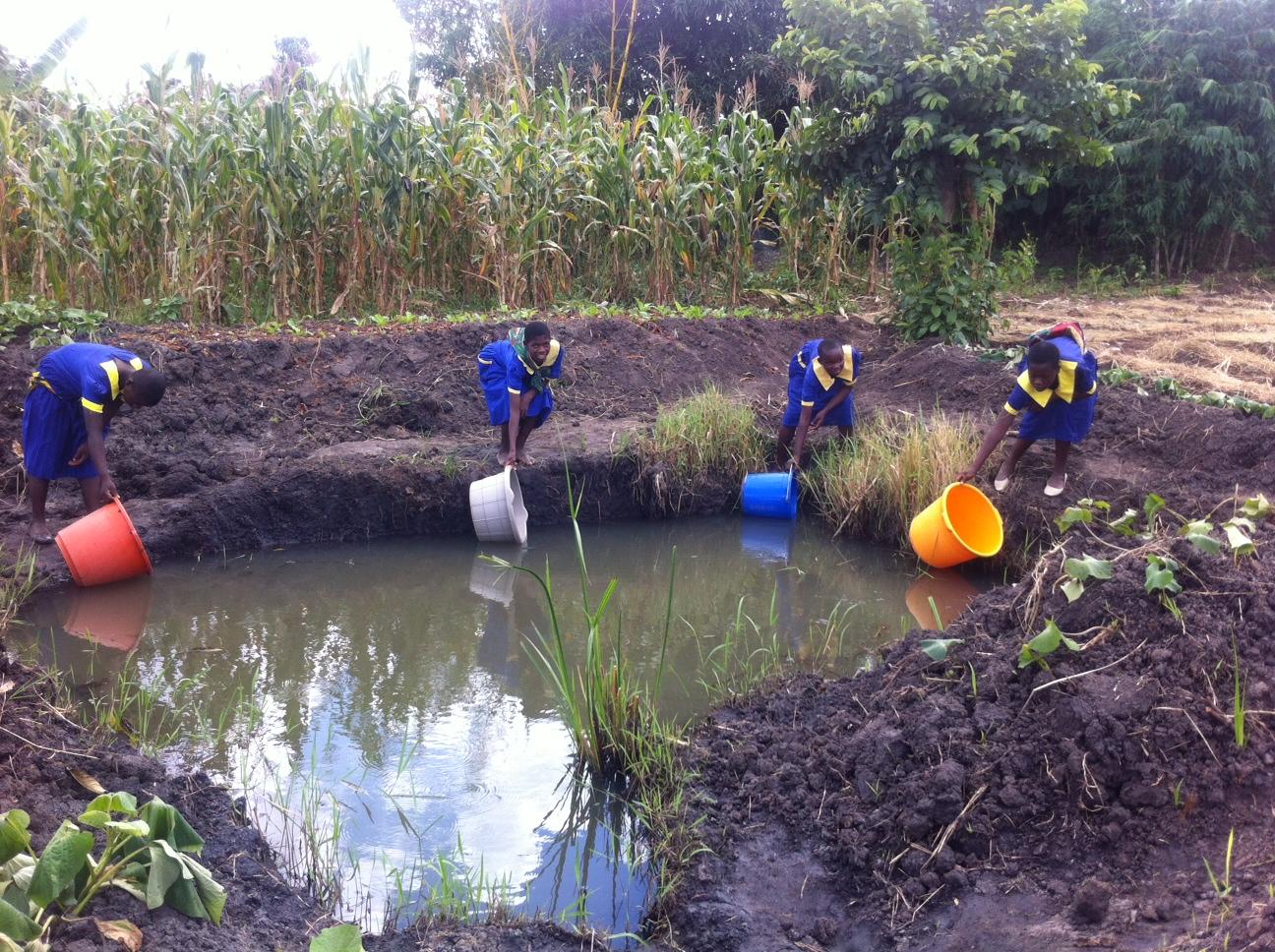 Photo via Freshwater Project International