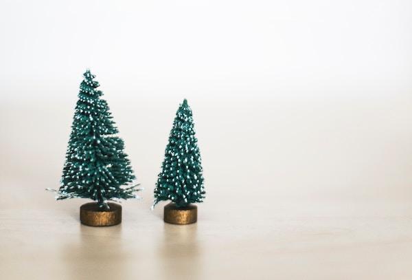 holiday-tree.jpg