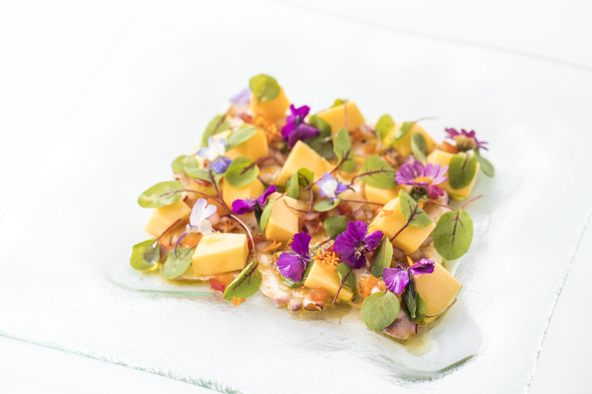 Carpaccio Di Polpo カルパッチョ・ディ・ポルポ($22)   柔らかく味わい深いスペイン産の蛸と完熟ヘイデン・マンゴーを、自家製チリペッパービネグレットとハーツオブファイヤー・マイクログリーンで和えた目にも鮮やかな一皿。爽やかな白ワインにぴったりの夏の味。