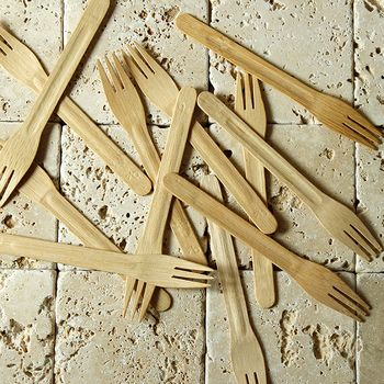 I know some workplaces and homes go through alot of disposable cutlery throughout this season. I personally carry my own reusable bamboo set, but if I were thinking of others, I would definitely recommend going for a biodegradable option!