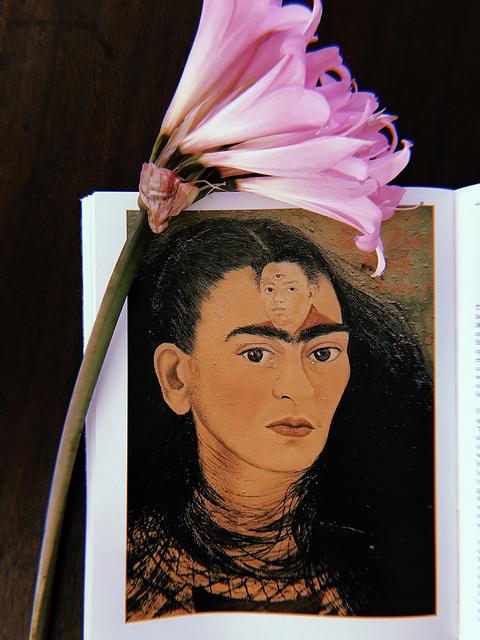 Frida Kahlo- Defined Spleen, Diego Rivera- Open Spleen.