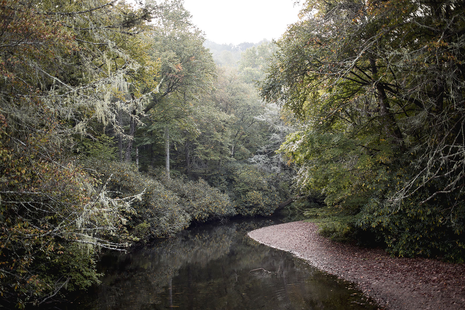 """The Nantahala River flows near her headwaters in what is now known as Standing Indian Campground in the Nantahala National Forest. Old-timers remember it as White Oak Bottoms where a 1927 logging camp once grew. Old growth white oaks are clear-cut by the Ritter Lumber Company and milled in nearby Rainbow Springs to the tune of 50,000 board feet a day. """"By 1940 … his ( W.M. Ritter ) company had already manufactured and sold three billion board feet of lumber — enough to comprise a solid train over 2,000 miles.""""  My pap-paw Pete Armes, the remaining living sibling of 13 brothers and sisters, remembers butchering hogs with his father and selling the cuts of pork from a mule-drawn wagon through the community that grew up around White Oak Bottoms. He can still remember the railroad tracks Ritter had put down to transport the lumber to the mill."""
