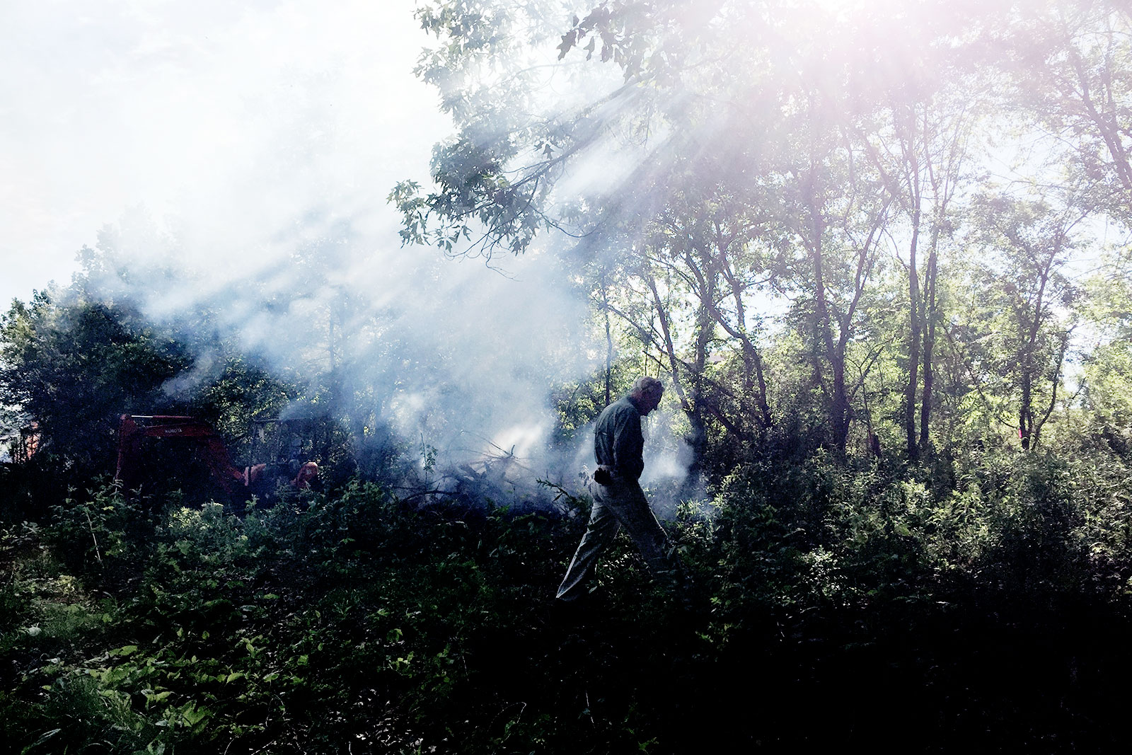 Smoke from cleared brush.