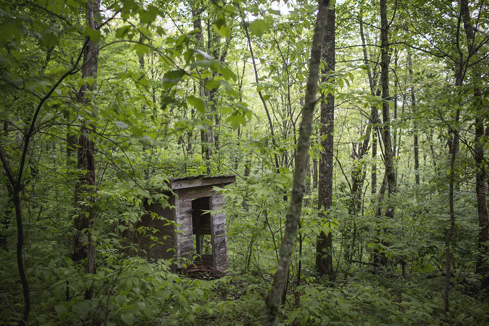 The outhouse for the historic Wilson Lick cabin, the first ranger station in the Nantahala National Forest.