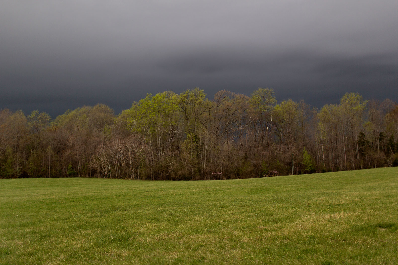 A storm gathers near the area Gen. Grant will bivouac the night of April 8, 1865.