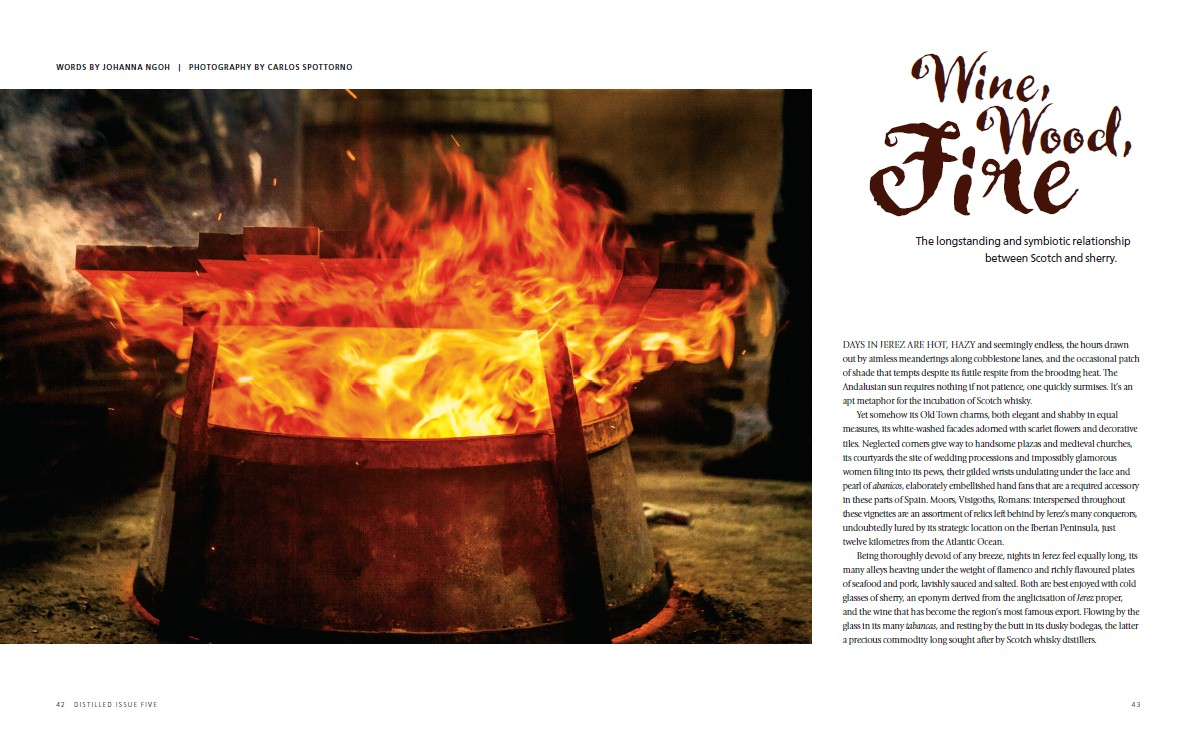 Issue 5 screenshot Wine Wood fire.jpg