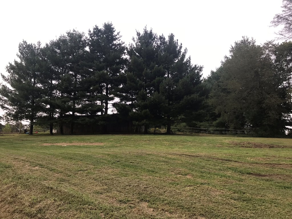 REALTEC-TIDD-HOLLOW-7-ACRES-PIKE-COUNTY-LAND.jpg