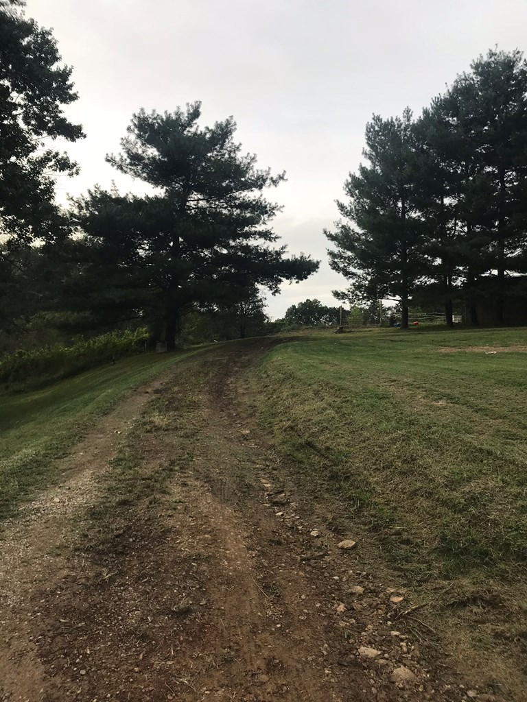 REALTEC-TIDD-HOLLOW-7-ACRES-PIKE-COUNTY.jpg