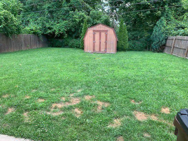 513 Rose backyard.jpg