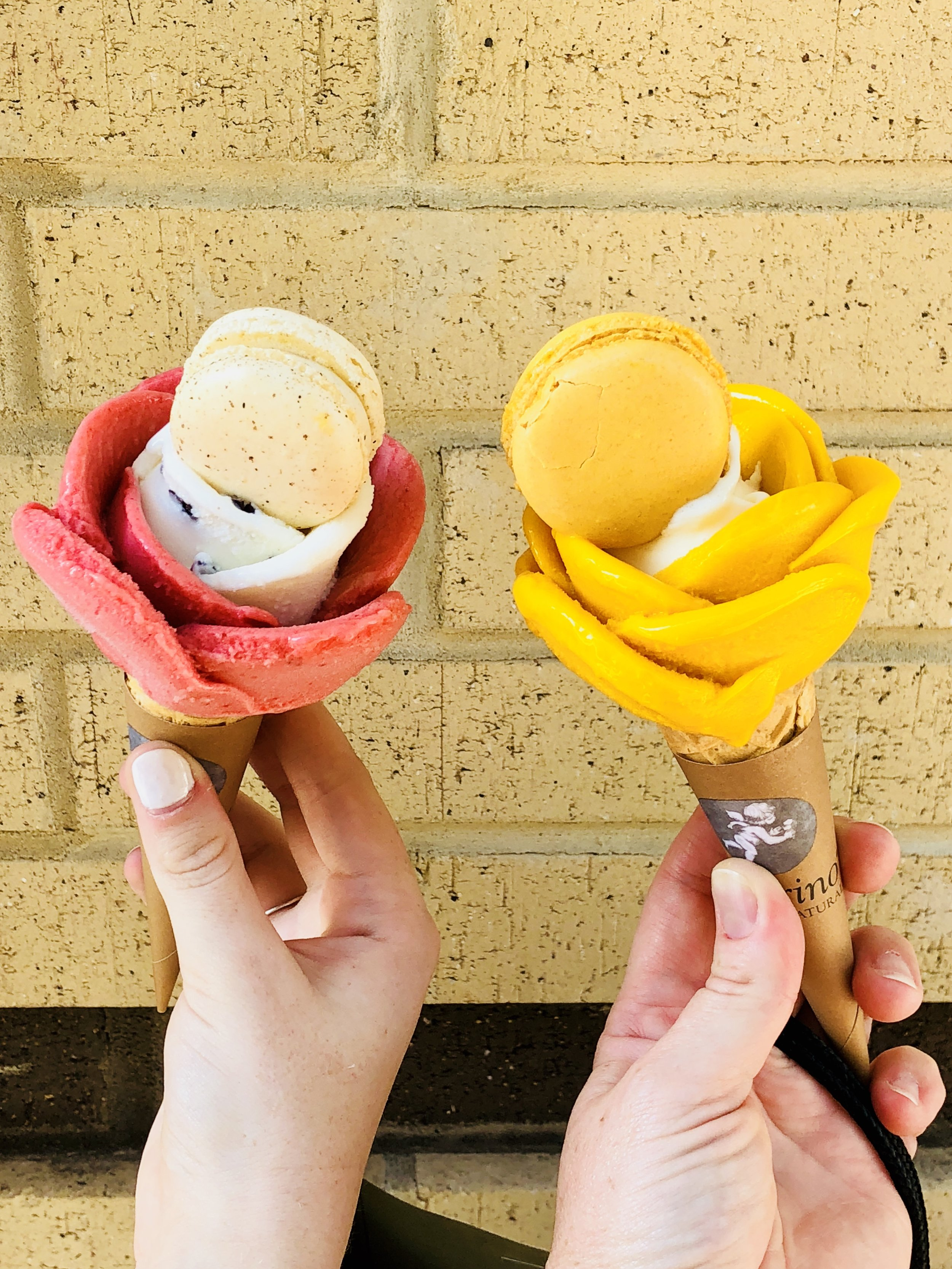 "How amazing are these gelato ""flowers"". It was so cool to watch when they made these. We found the little shop in Raleigh last summer and will definitely stop again when we go this summer."