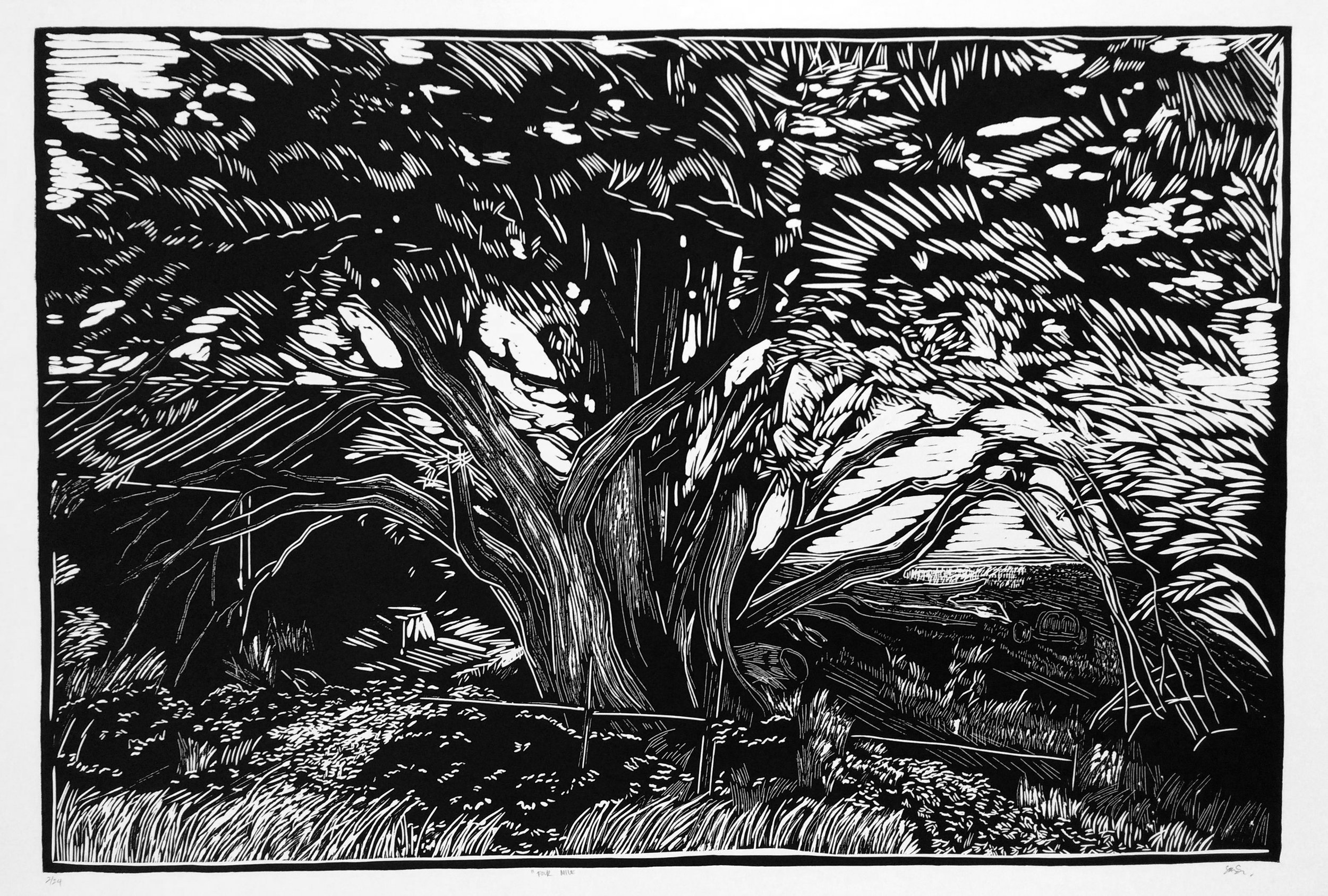 FOUR MILE   ARTIST: Sirima Sataman MEDIUM: Linocut – Ink on 100% cotton paper DIMENSIONS: 48 in x 36 in | 121,92 cm x 91,44 cm EDITION: 24 PRICE: $750 unframed | $1800 framed
