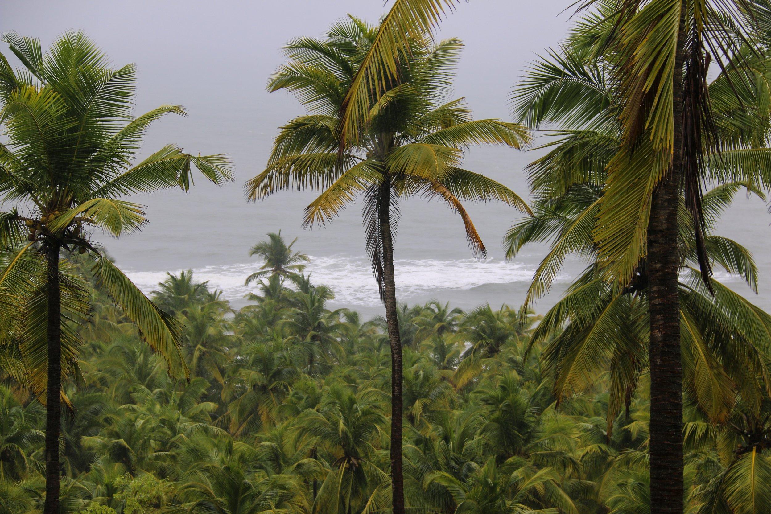 Goa's Coastline