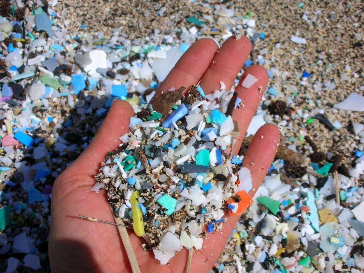 Goa beach clean up vaayu.jpg