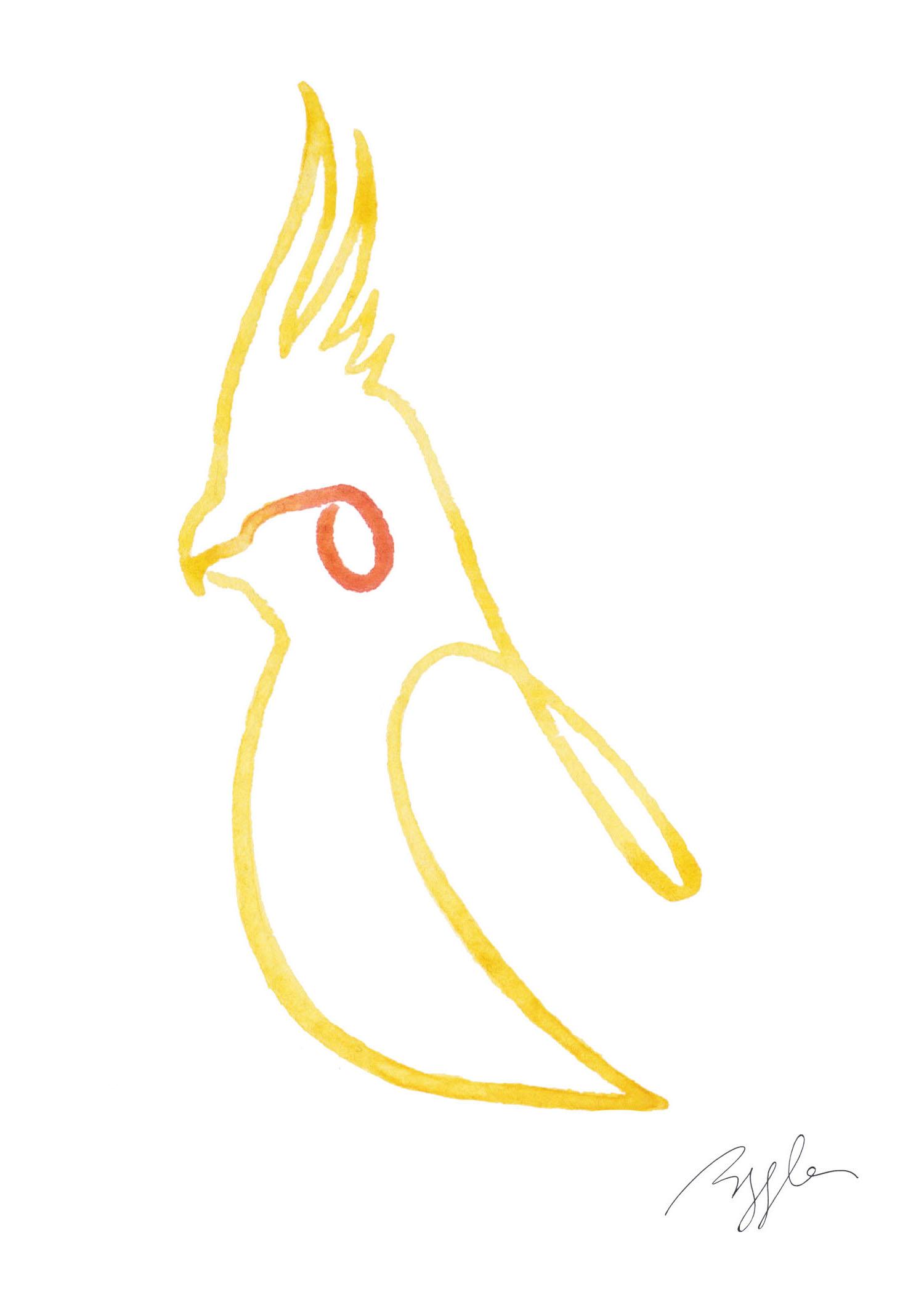 Brazzlebird - Yellow Cockatiel Bird Line Watercolor Painting.jpg