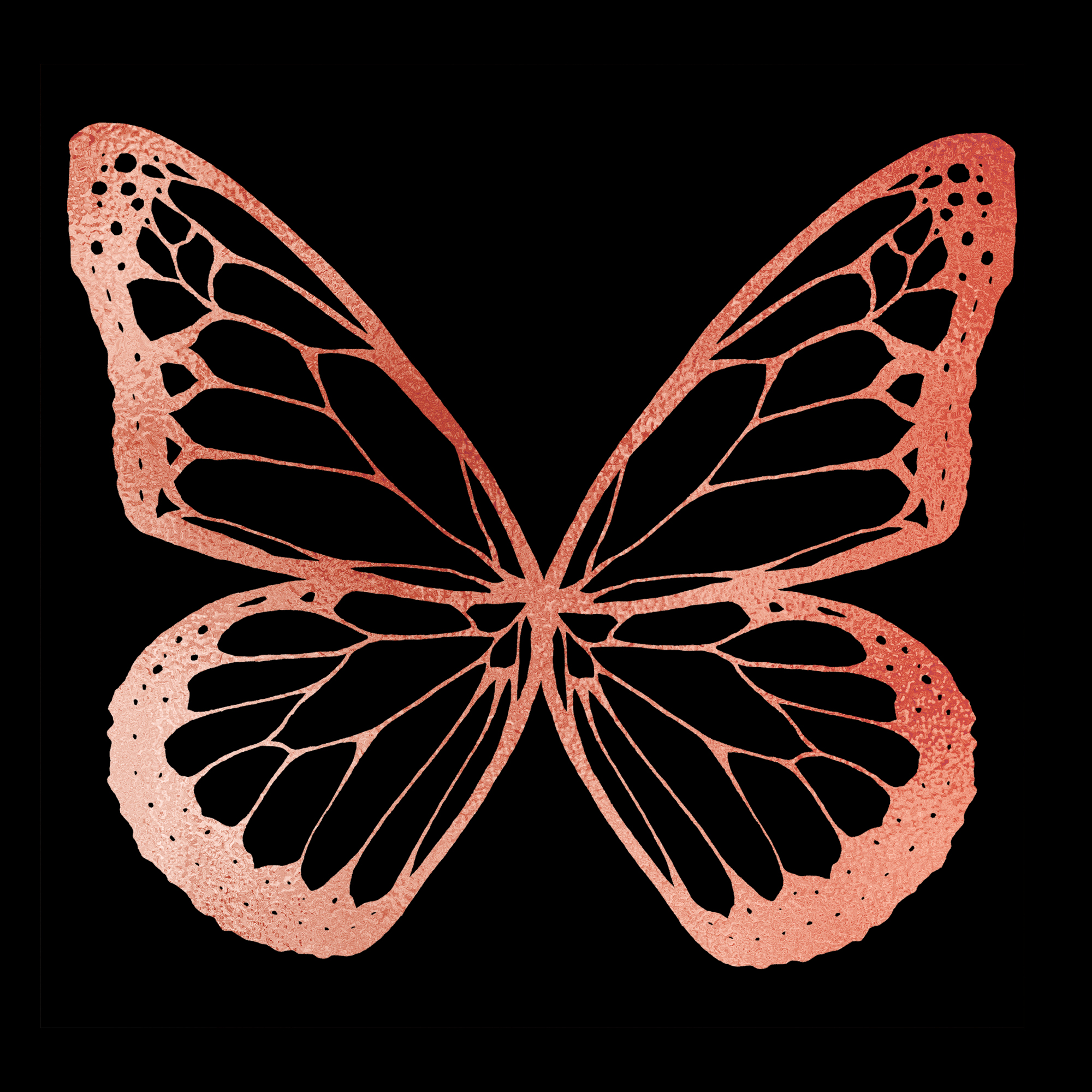 Brazzlebird - Rose Gold Butterfly on Black Print