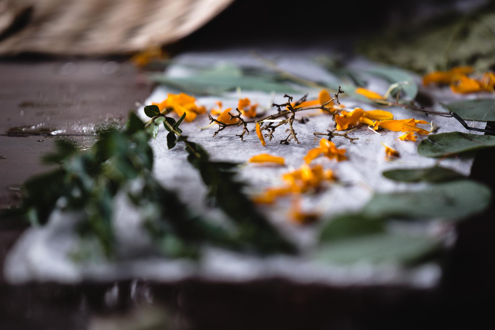 The Creative Refresh Bali by Krisna Overton-4208.jpg