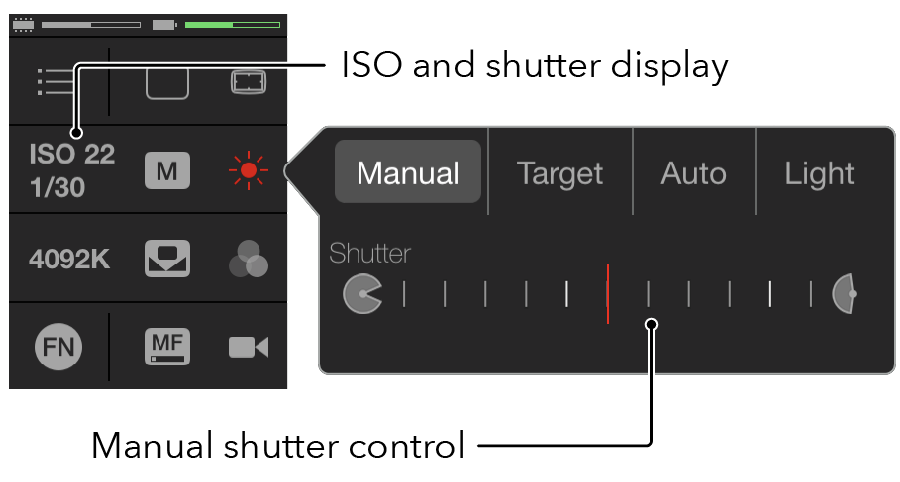 Manual Shutter - Adjust the exposure by changing the ISO or shutter speed to remove the peaks and troughs. If the exposure controls don't fix it, then you'll need to look at the lighting. You can use MAVIS as a tool to help set your lighting accurately.