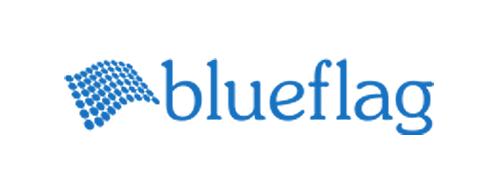 blue flag investments llc