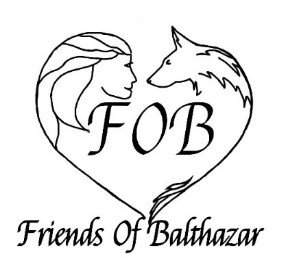 Click on the photo to go to the website of Bosnian streetdogs.