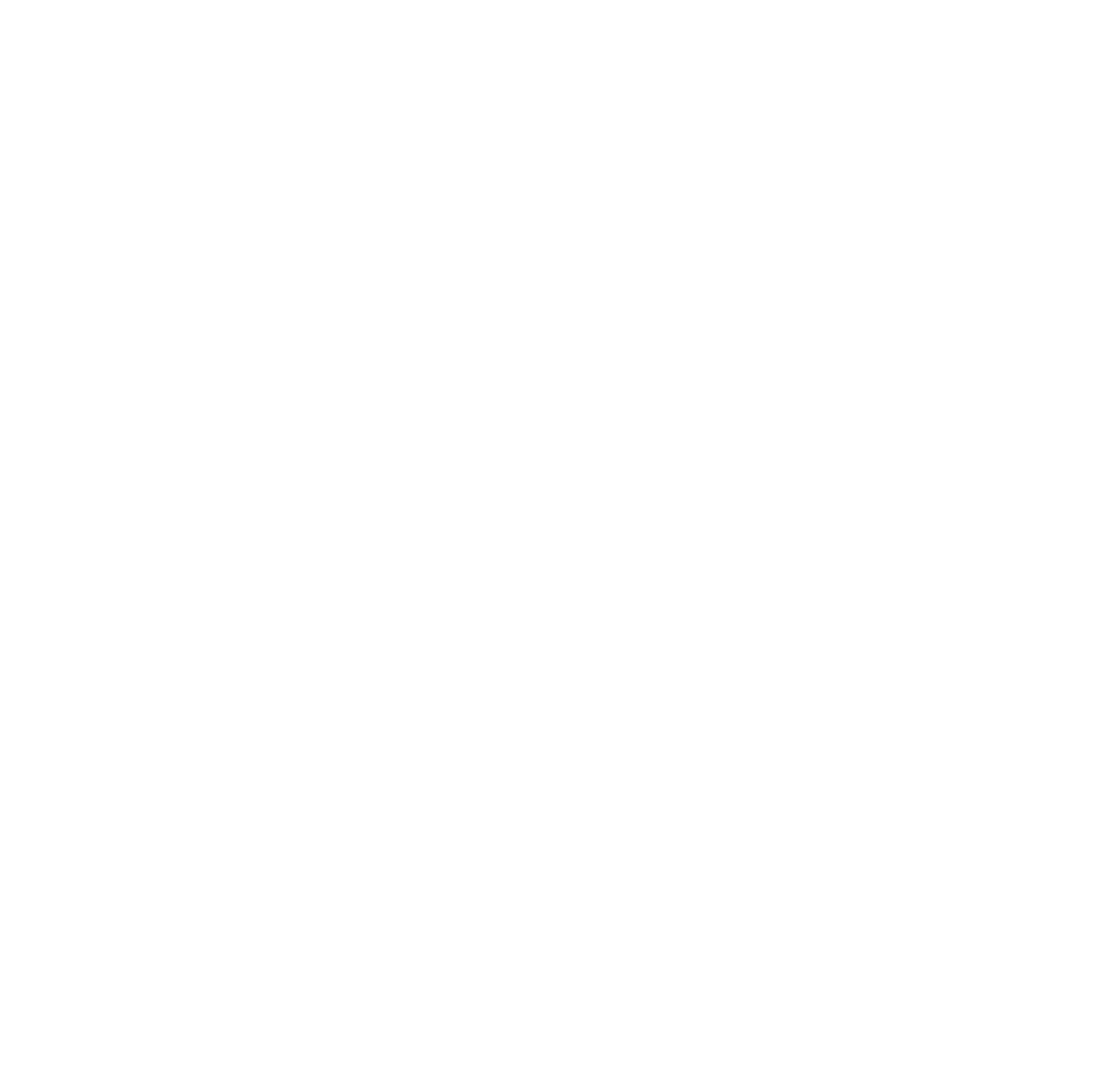 Icons White-15.png